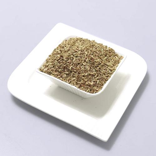Fennel-Seeds1.jpg