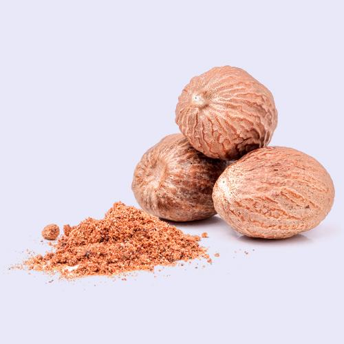 Nut-Meg1.jpg