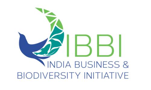 ibbi-logo1.png